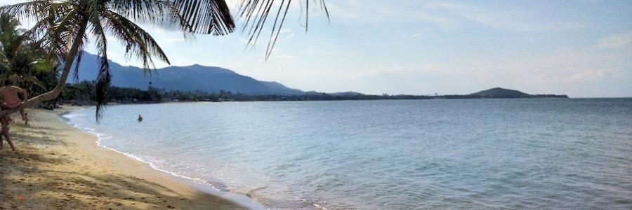 Maenam Beach Thailand Koh Samui Palmen