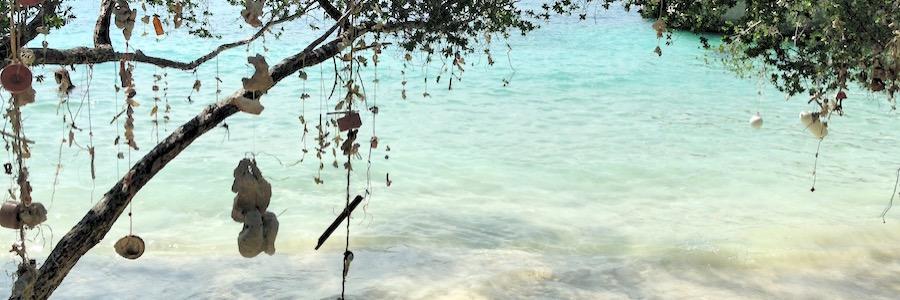 Freedom Beach Koh Tao Thailand Baume Reiseblog Flashpacking4life