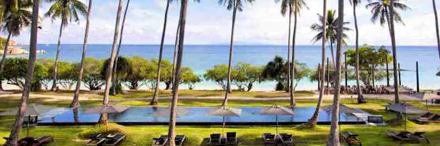 Haadtien Beach Resort Koh Tao Thailand Shark Bay
