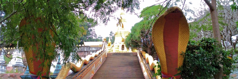 Racha Thammaram Snake Stone Pogda Lamai Koh Samui