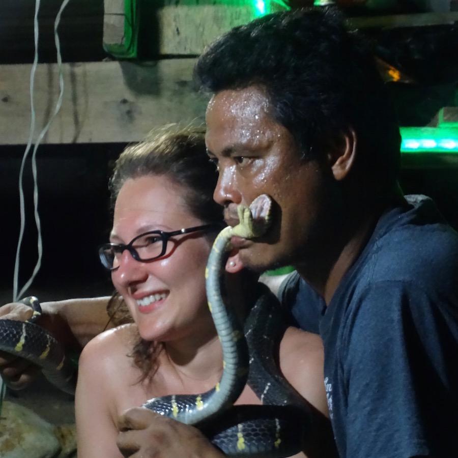 Snake Show Koh Lanta Thailand Cobra