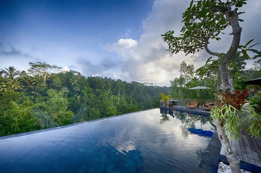 Pool Dschungel Bali